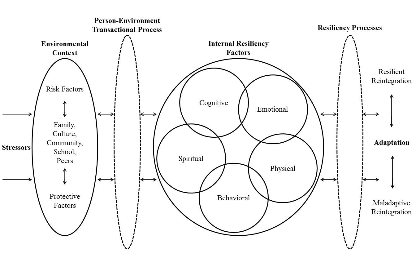 Figure 1: Resilience Framework (Kumpfer, 1999, p. 185)